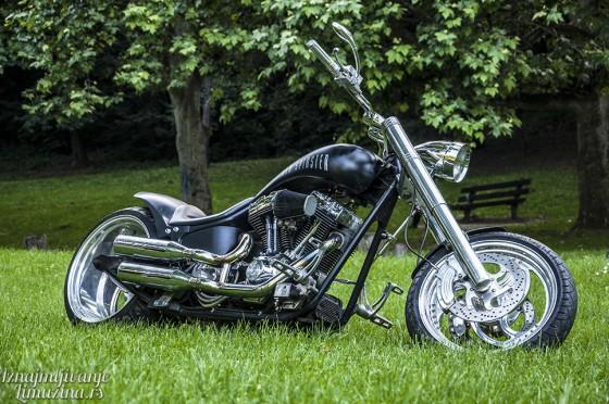 Harley Old Spinster (2)