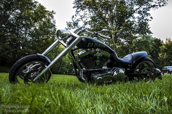 Harley Old Spinster (3)
