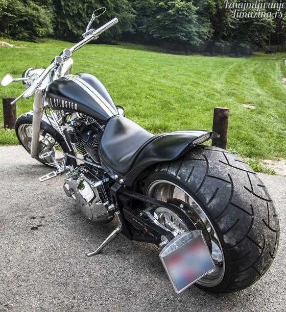 Harley Old Spinster (4)