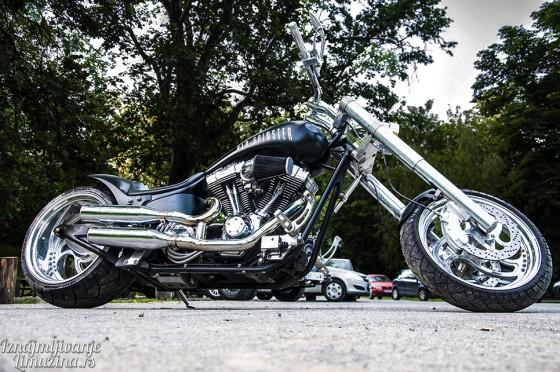 Harley Old Spinster (5)
